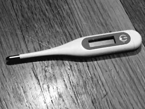 Thermometer - Sarah Dykema sarahdykema.com